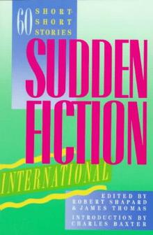 Sudden-Fiction-International