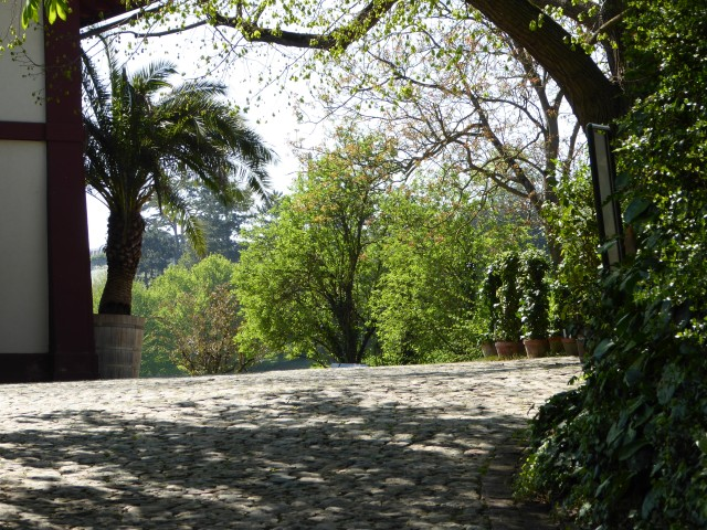 Botanical Garden Basel